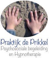 logo_praktijk_de_prikkel_beverwijk
